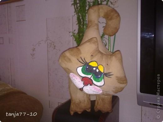 Ароматный котик фото 1