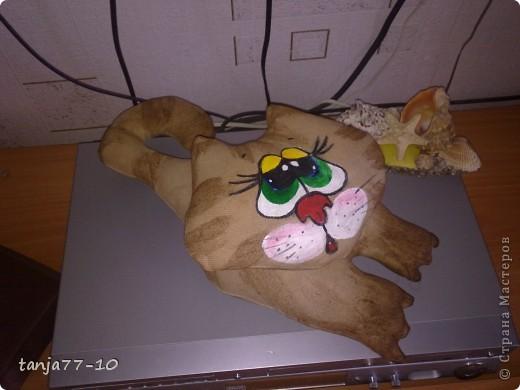 Ароматный котик фото 3