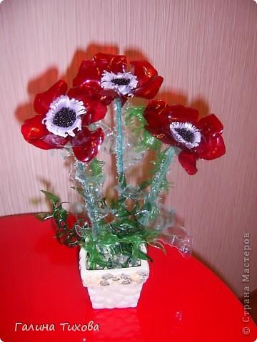 Цветы из яичных ячеек.  Мастер-класс: http://masterica.maxiwebsite.ru/archives/1088#more-1088 фото 3