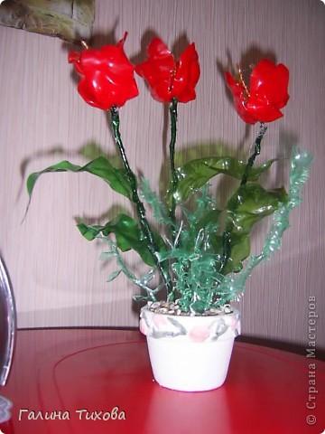 Цветы из яичных ячеек.  Мастер-класс: http://masterica.maxiwebsite.ru/archives/1088#more-1088 фото 7