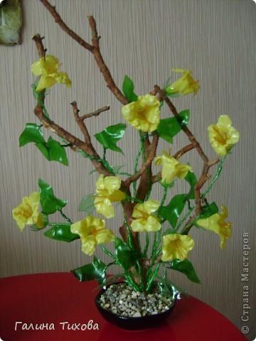 Цветы из яичных ячеек.  Мастер-класс: http://masterica.maxiwebsite.ru/archives/1088#more-1088 фото 9