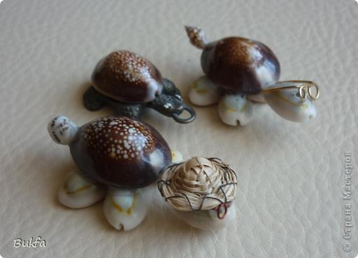 Продолжаю показывать своих черепашек. Начало можно посмотреть здесь http://stranamasterov.ru/node/151515. Фигурки куплены нами или подарены друзьями и родными, поэтому попадаются вроде бы одинаковые, но разного оформления. Рассказы о черепахах, как о живых или мифических существах или о символах предлагаю почитать у Олиандры.   Решила начать с микрораздела.  Это броши.  фото 9