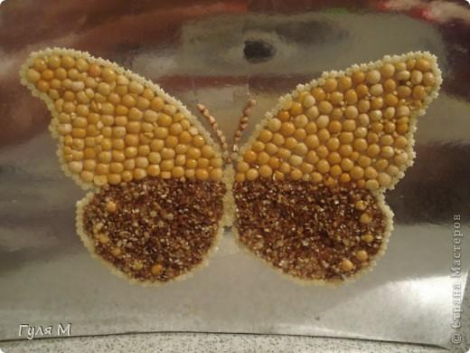 Бабочка поделка в детский сад