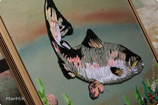 Рыбка с холодных морей фото 4