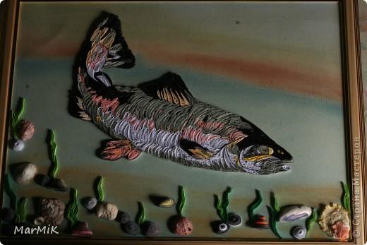 Рыбка с холодных морей фото 5