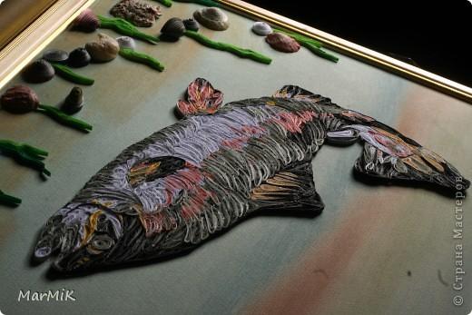 Рыбка с холодных морей фото 8