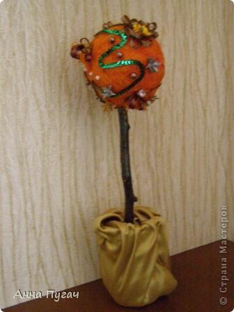 """Мой муж назвал его """"Апельсиновое дерево""""!!!! фото 3"""