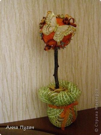 """Мой муж назвал его """"Апельсиновое дерево""""!!!! фото 4"""