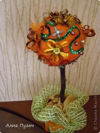 """Мой муж назвал его """"Апельсиновое дерево""""!!!! фото 6"""
