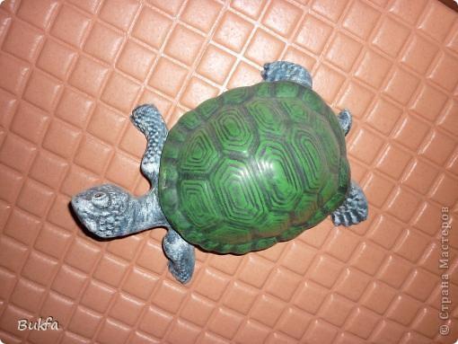 Это моя первая черепаха С нее началась коллекция. Увидела ее сама в палатке и не смогла пройти мимо: смотрела прямо мне в глаза и просилась к нам домой. Взяла ее, посадила в сумку, принесла домой. Поселилась она на стене в коридоре. Так и встречаетнас с тех пор, ждет, и мы торопимся к ней. фото 2