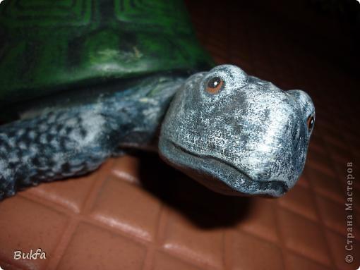 Это моя первая черепаха С нее началась коллекция. Увидела ее сама в палатке и не смогла пройти мимо: смотрела прямо мне в глаза и просилась к нам домой. Взяла ее, посадила в сумку, принесла домой. Поселилась она на стене в коридоре. Так и встречаетнас с тех пор, ждет, и мы торопимся к ней. фото 1