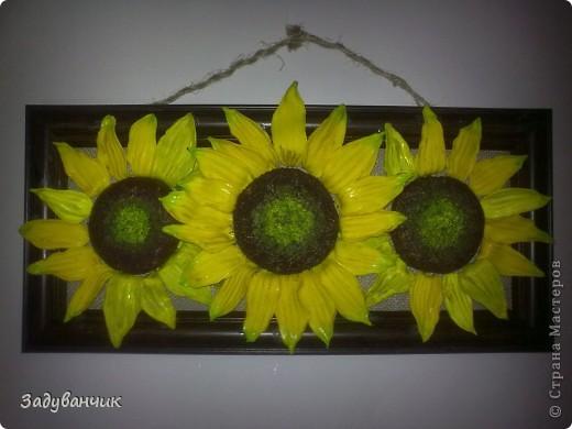 Подсолнушки в подарок подруге фото 2