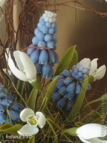 В ожидании весны фото 1