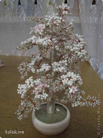 Снежное дерево фото 1