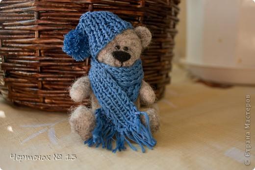 Мишка который очень любит тепло, а так как резко похолодало и пришла настоящая зима ,Тэд одел свою самую теплую шапочку и шарфик и теперь ему не страшен никакой мороз ))) фото 2