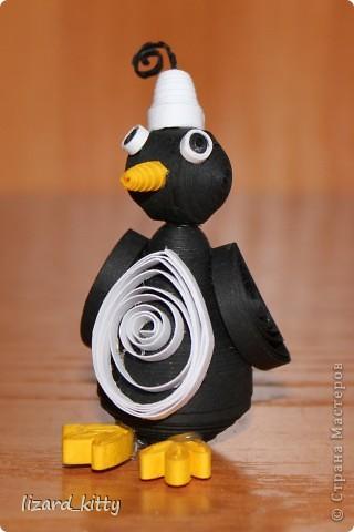 Пингвинёнок  фото 2