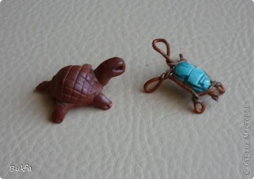 Дорогие мастерицы и мастера! Я, наконец-то пришла к концу серии фоторепортажей (ха-аха) о небольшой коллекции черепах, которую собирали мы всей семьюй. Если заинтересовались посмотрите раньше загруженные здесь: http://stranamasterov.ru/node/151515 http://stranamasterov.ru/node/151571 http://stranamasterov.ru/node/151613 http://stranamasterov.ru/node/152140 http://stranamasterov.ru/node/152480 http://stranamasterov.ru/node/152628  Закончить решила показом черепах самодельных. Таких тоже есть немножко. Надо бы расширить их ассортимент, да появилось другое увлечение - фигурки ангелов. Ну ладно хватит распинаться. Это сборная модель черепахи. Вот она-то самая большая в доме. Опять моя любимая водяная. Собирал сын, он тогда в школе учился. Конечноиз покупного набора. Но все-таки поделка. Или нет? фото 3
