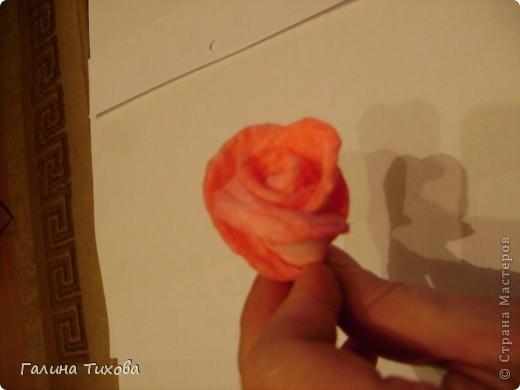 Мастер-класс Поделка изделие 8 марта Моделирование конструирование Мастер-класс «Розы из ватных косметических дисков» Диски ватные Материал бросовый фото 5