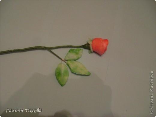 Мастер-класс Поделка изделие 8 марта Моделирование конструирование Мастер-класс «Розы из ватных косметических дисков» Диски ватные Материал бросовый фото 8