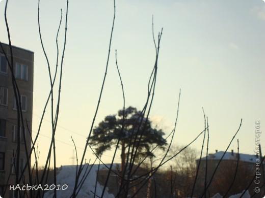 эх зимушка зима! фото 1