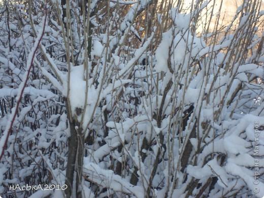 эх зимушка зима! фото 2