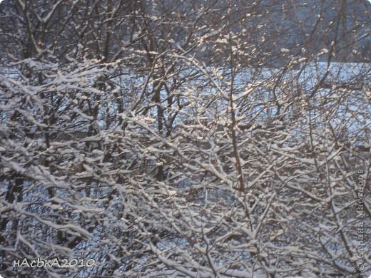 эх зимушка зима! фото 3