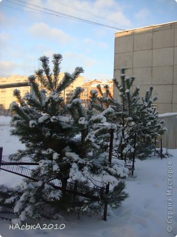 эх зимушка зима! фото 9