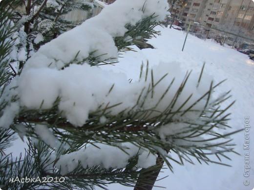 эх зимушка зима! фото 10