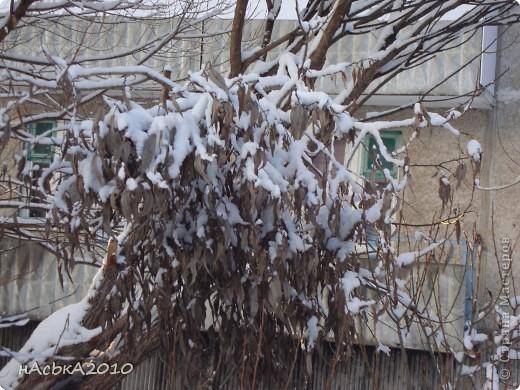 эх зимушка зима! фото 11