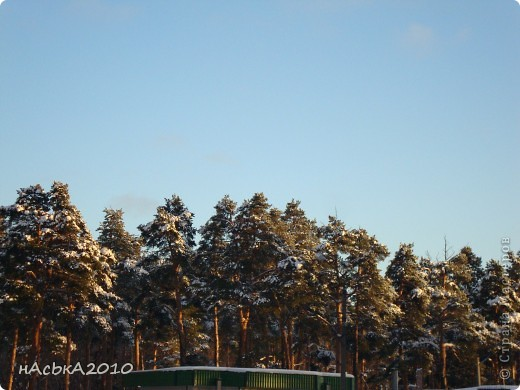 эх зимушка зима! фото 12