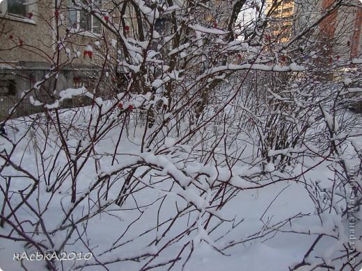 эх зимушка зима! фото 13