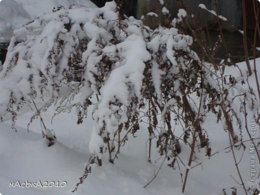 эх зимушка зима! фото 14