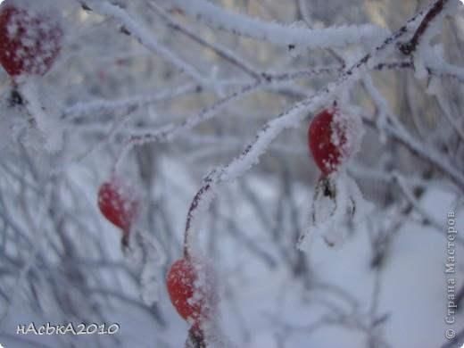 эх зимушка зима! фото 15