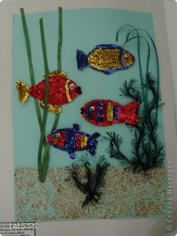 Любимые рыбки
