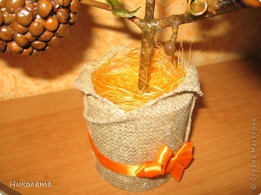 Обожаю кофе, наконец-то сделала  своё деревце!!!! фото 3