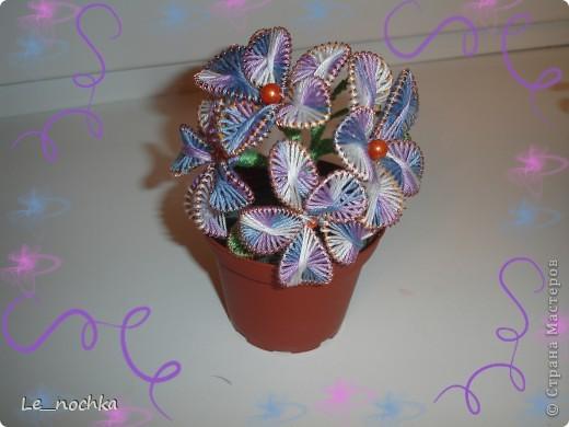 Цветочки в горшочках! фото 1