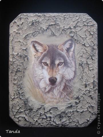 Есть у меня приятель, очень он волков любит. Вот и решила сделать ему такой вот подарок на 23 февраля... фото 2