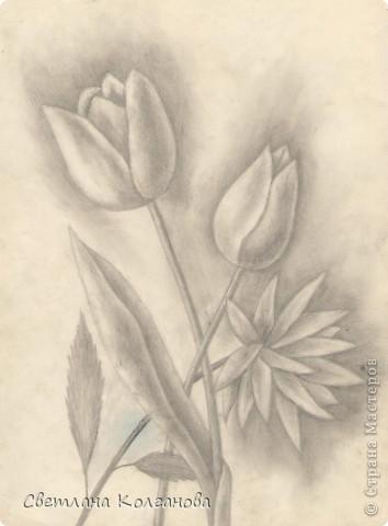 Цветочная композиция. 1996 г. фото 1