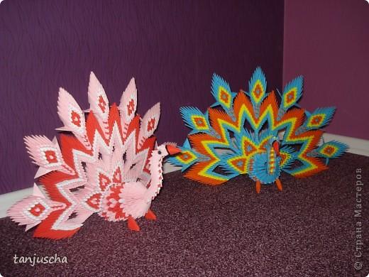 Павлины Модульное оригами