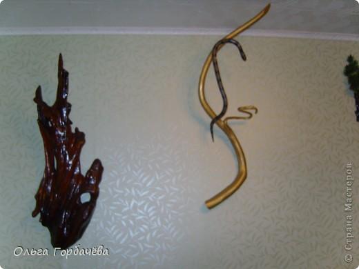 Три змеи фото 5