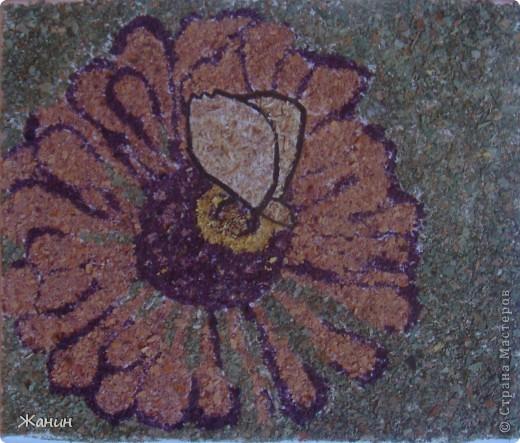 Этот цветок с бабочкой я сделала из сухих листьев и цветов, а именно: листья клёна и фикуса, лепестки розы и хризантемы, немножко герани, тюльпоны, банан. фото 1