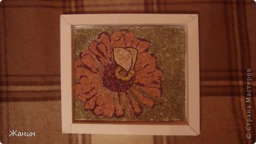 Этот цветок с бабочкой я сделала из сухих листьев и цветов, а именно: листья клёна и фикуса, лепестки розы и хризантемы, немножко герани, тюльпоны, банан. фото 13