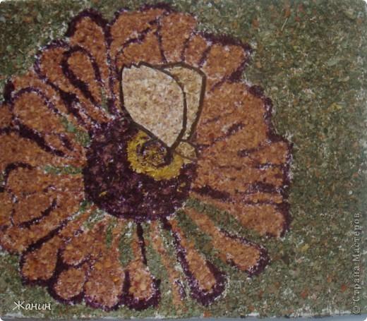 Этот цветок с бабочкой я сделала из сухих листьев и цветов, а именно: листья клёна и фикуса, лепестки розы и хризантемы, немножко герани, тюльпоны, банан. фото 12