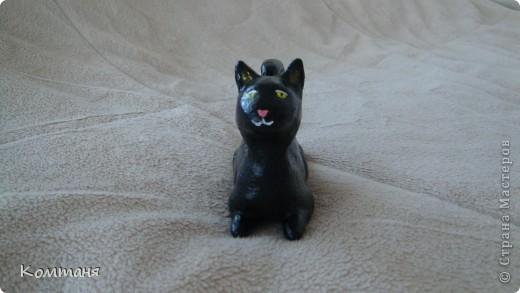 Черный черный кот! фото 3