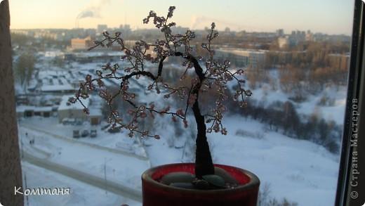 сакура-сердце! дерево из бисера фото 1