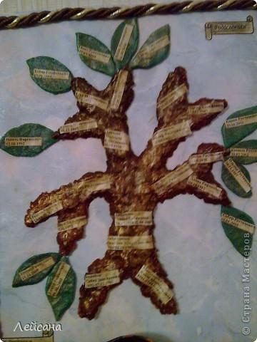 Родословные получились все разные. Вот это древо сделала из бумажного теста фото 1