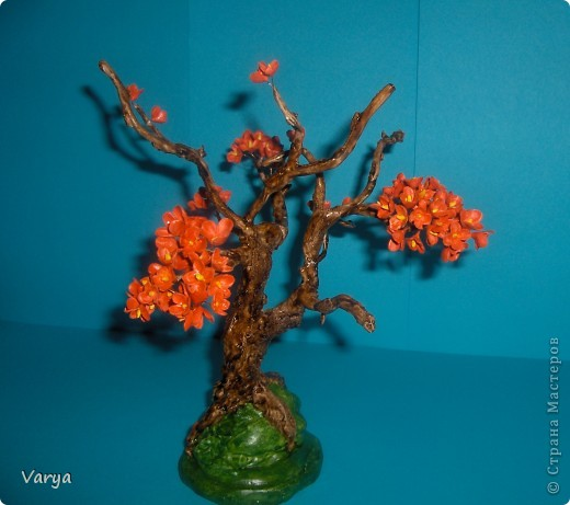 Дерево. фото 1