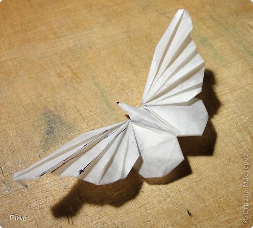 Схема для этой бабочки находится здесь - http://www.liveinternet.ru/users/byxtelka/post101642047/? . К сожалению, я не знаю ее автора и названия (если кто-нибудь сможет помочь - буду очень признательна)  фото 1
