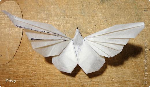 Схема для этой бабочки находится здесь - http://www.liveinternet.ru/users/byxtelka/post101642047/? . К сожалению, я не знаю ее автора и названия (если кто-нибудь сможет помочь - буду очень признательна)  фото 24