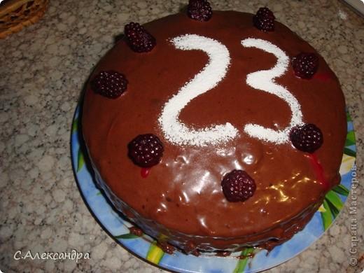 Вот такой вот торт мы с подружкой испекли нашим мужчинам на работе. фото 1